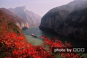 Fall colors by the Yangtze River