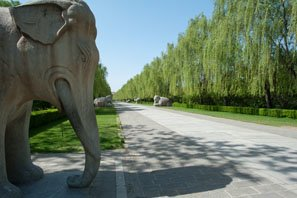 The Sacred Way to the Ming Tombs