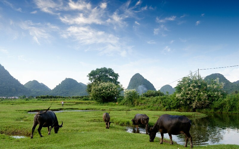 Guilin Weather in November