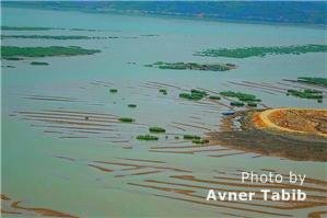 Xiapu mudflats