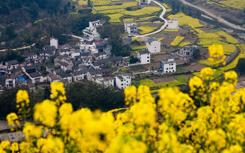 Wuyuan Travel Guide - How to Plan a Trip to Wuyuan