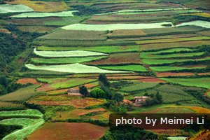 Spring Scenery in Dongchuan