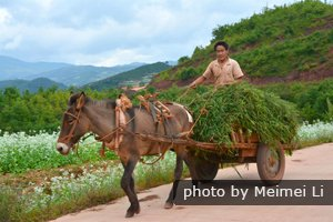 The local people's life at Dongchuan