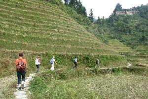 Hikingn amoung Longji Terraced Fields