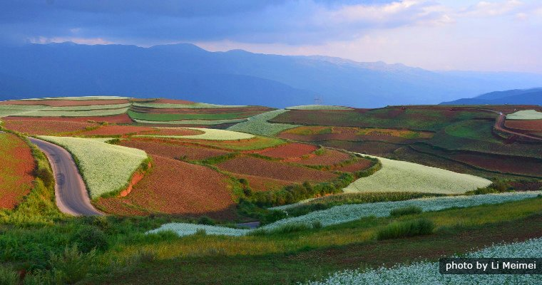 River Snail Bay,Dongchuan Red Land