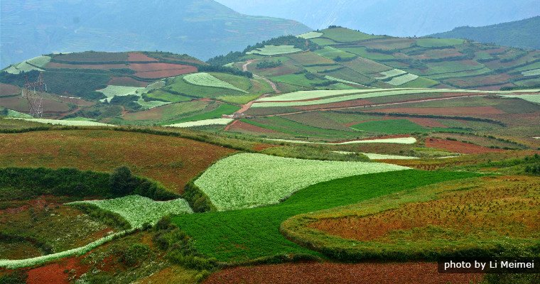 Embroidery Garden, Dongchuan Red Land