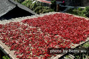 Chilli are dried for chilli sauce