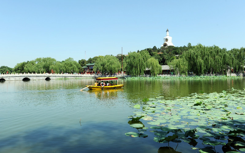 The Most Special Things to Do with Kids in Beijing