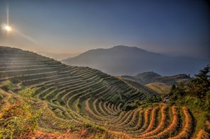Terraced fields Longsheng