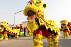 Lion dances are spectacular!