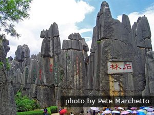 The Greater and Lesser Stone Forest
