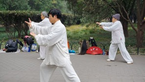Studying Kungfu in China — from Tai Chi to Wing Chun