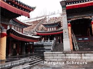 Kumbum Monastery, Xining, Qinghai