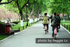Riding a bicycle is one of the best ways to explore Hangzhou。
