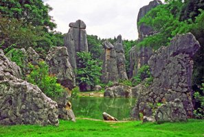 Stone Forest in Spring