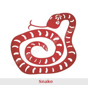 The Chinese Zodiac Sign Snake