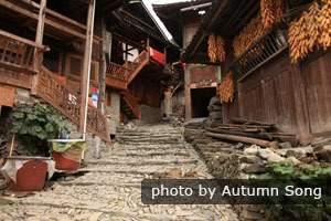 Langde Miao Village buildings