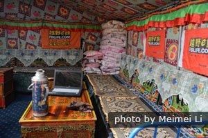 tent hostel