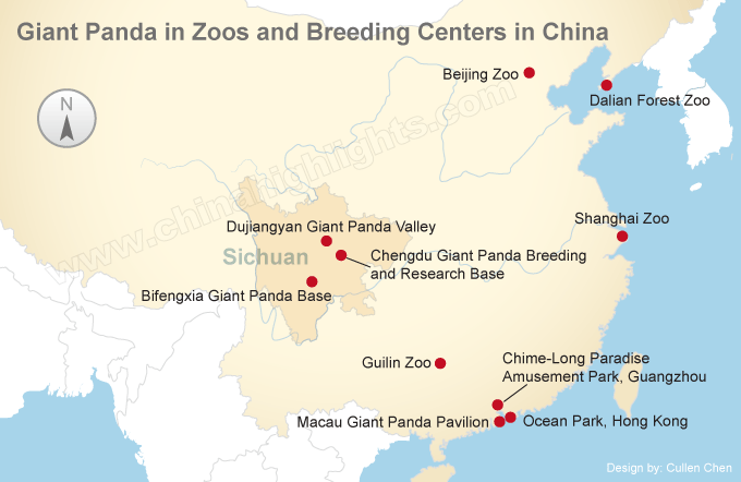 giant pandas in zoos in China