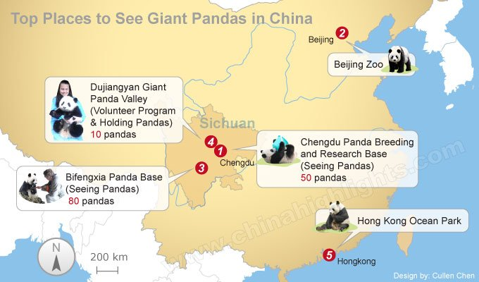 top places to see giant panda map