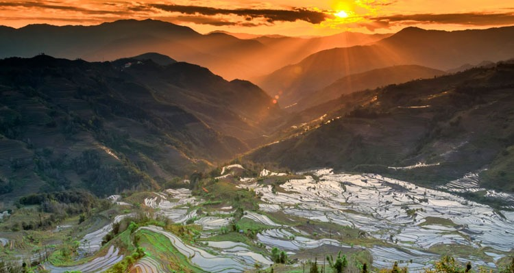 the sunset in the terraced fields