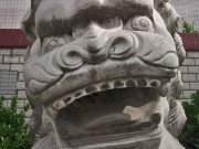 gray happy stone lion face