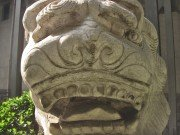 Yellow and concerned stone lion face