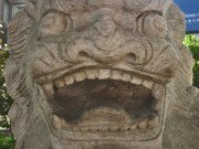 crazy stone lion face