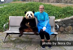 taking photos with a giant panda