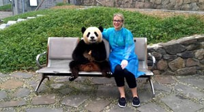 a must-do thing in your first china trip: see giant panda