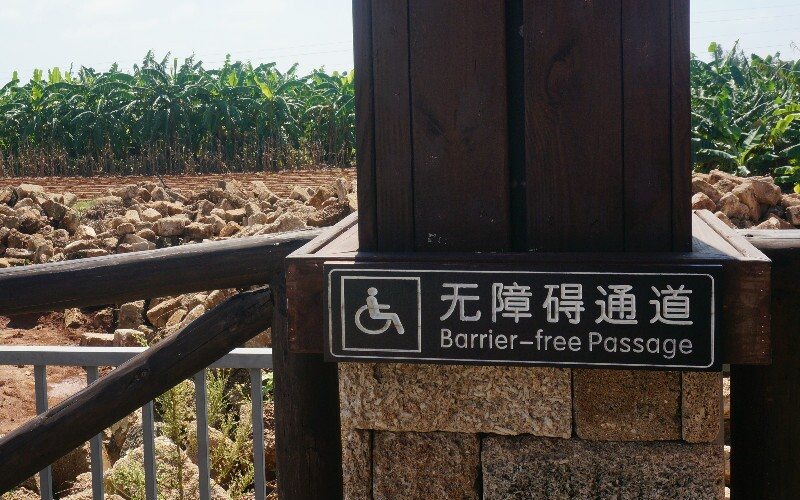 China's Disabled Access/Facilities — a British Carer's Advice