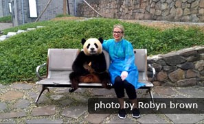 Visitors can hold a giant panda at Dujiangyan Base.