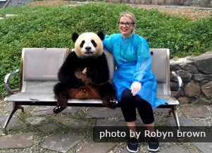take a picture with a giant panda