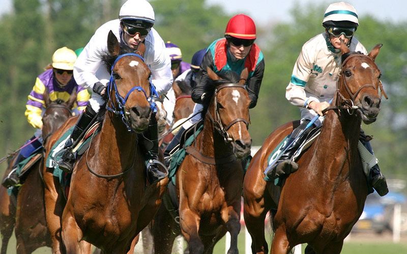 The Hong Kong Horse Racing Season
