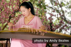 A Chinese woman playing the guzheng
