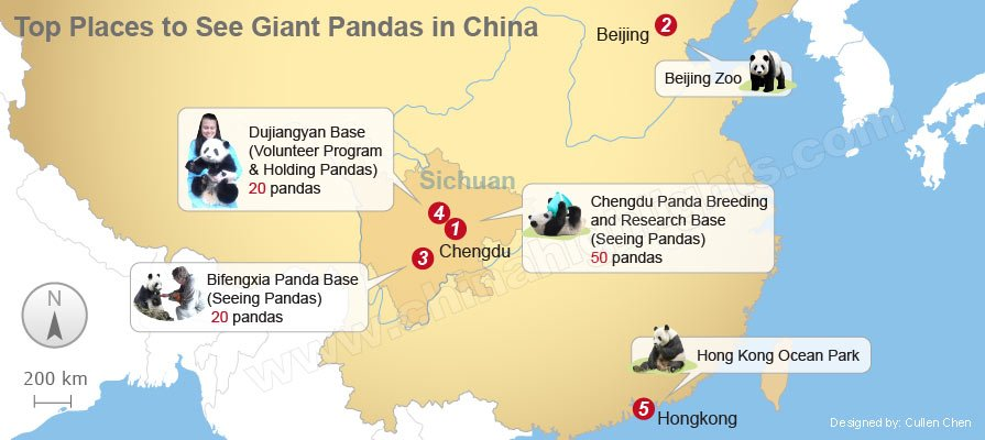 top places to see giant pandas