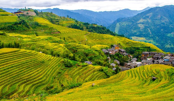 The Longsheng Rice Terraces (World's Most Incredible)