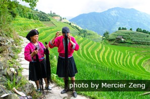 The Longji Terraced Fields
