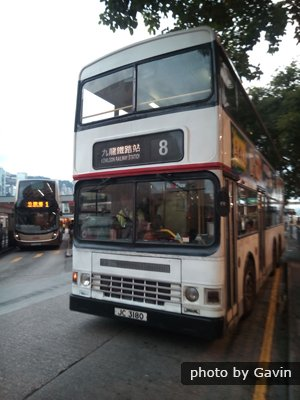 Hong Kong Bus 8