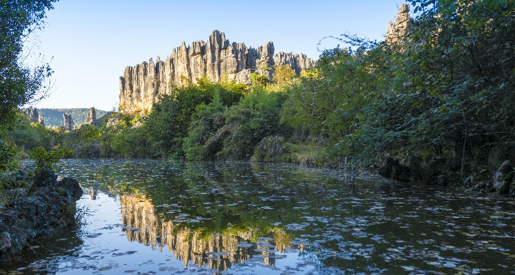 the reflection of the stone forest