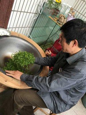 drying green tea