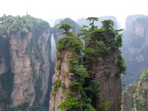 The scenery of Zhangjiajie National Forest Park