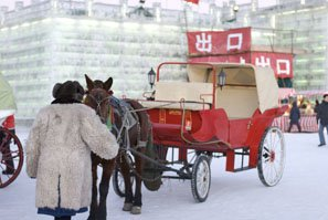 Horse and carriage in Harbin