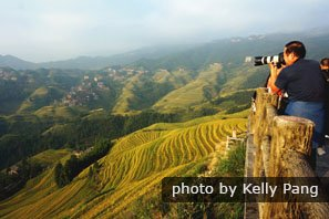 The Jinkeng Terraced Fields