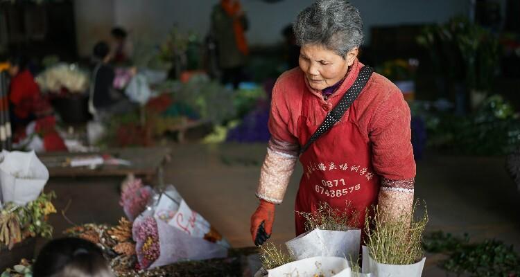 Trading at Dounan Flower Market