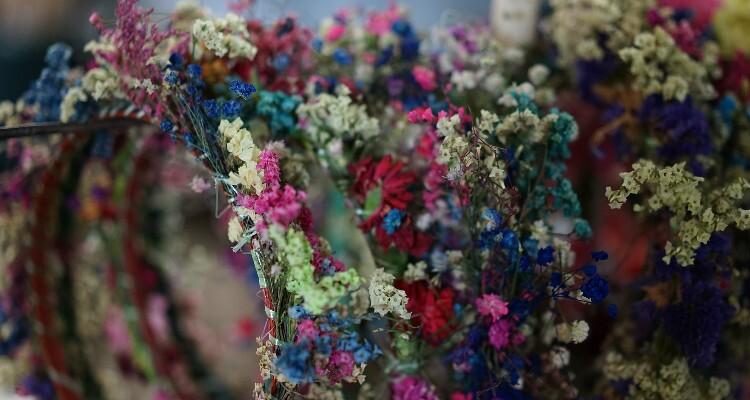 Dried Flowers at Dounan