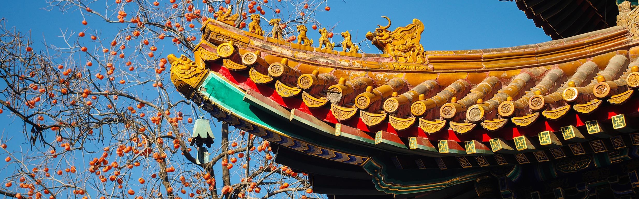 Beijing Spotlight Experiences