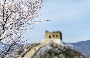 spring at the Great Wall