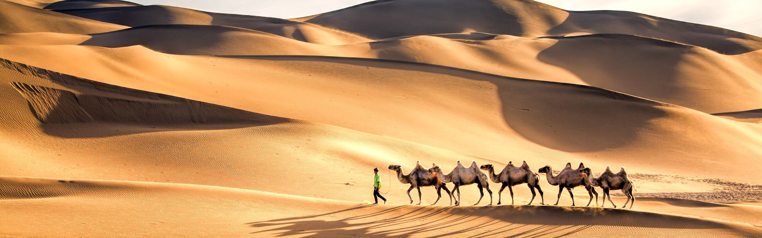 Taklimakhan Desert Highway Adventure