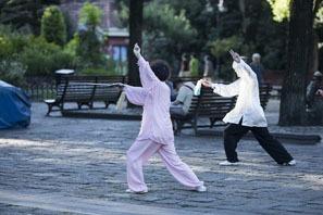kungfu chinois